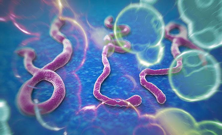 ebola_virus_outbreak