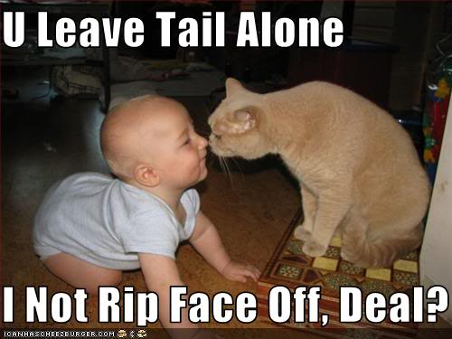 funny-pictures-cat-makes-deal-with-baby