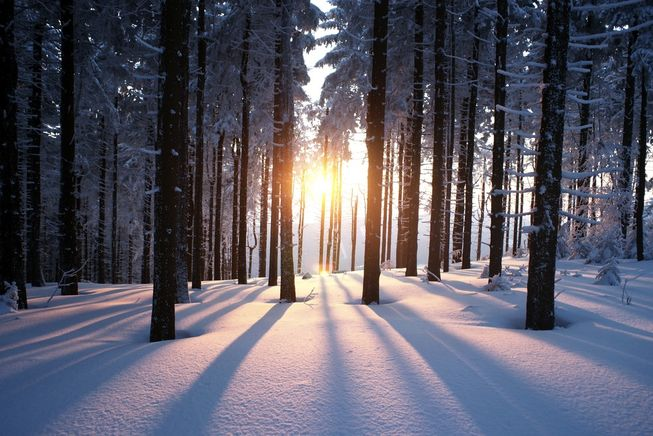 winter-solstice-facts.jpg.653x0_q80_crop-smart