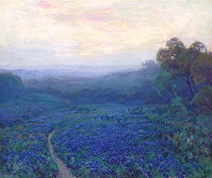 path-through-a-field-of-bluebonnets